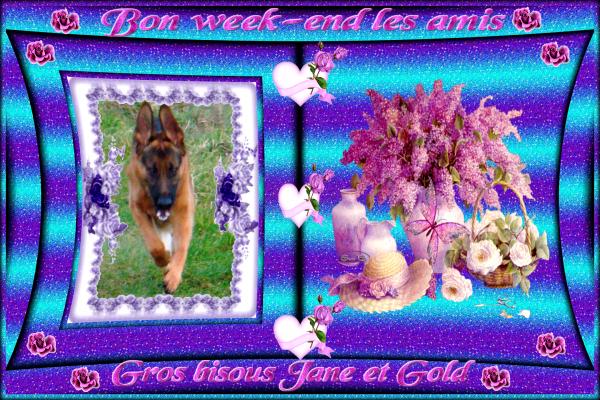 GOLD CADEAU BON WEEK-END POUR VOUS LES AMIS SERVEZ-VOUS