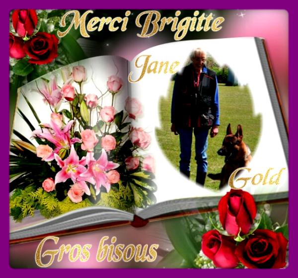 CADEAU DE NOTRE AMIE BRIGITTE POUR NOUS REMERCIER D ALLER SUR SON BLOG