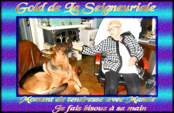 GOLD NEWS ET PHOTOS DIVERS ET UN CADEAU DE MA COPINE CHEYENNE