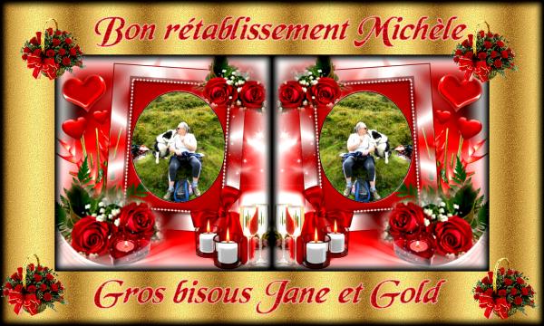 Cadeau de Bon  Rétablissement pour notre amie Michèle