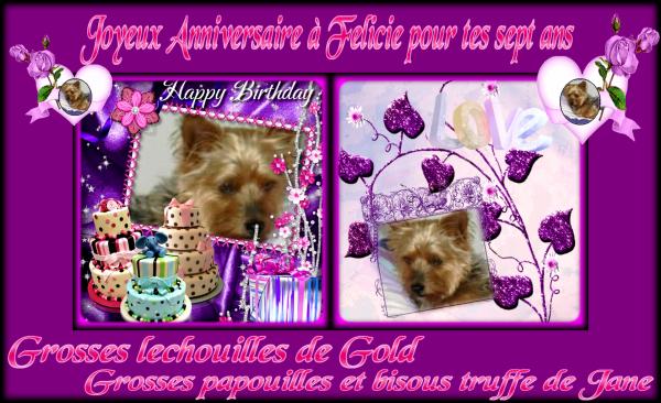 """Cadeau d""""anniversaire pour la belle Felicie la louloutte de notre ami Breton Anthony"""