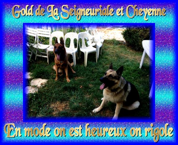 News du jour et photos prises cet été chez ma copine Cheyenne.