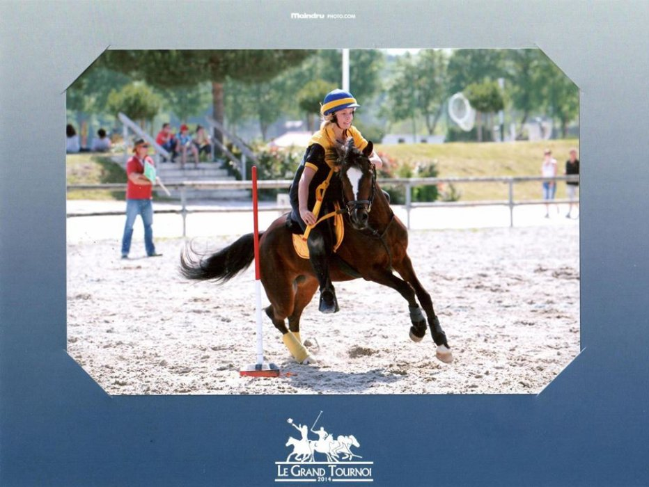 Blog de Belle-île & Céline Pony Mounted Games  ღ