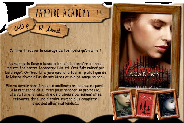 Vampire Academy T4