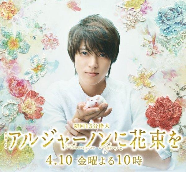 Algernon ni Hanataba wo (Flower for Algernon)