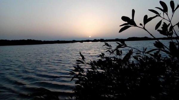 visiter les îles du saloum
