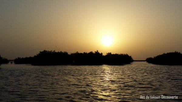 Vacances au Sénégal, dans la belle région du Sine Saloum