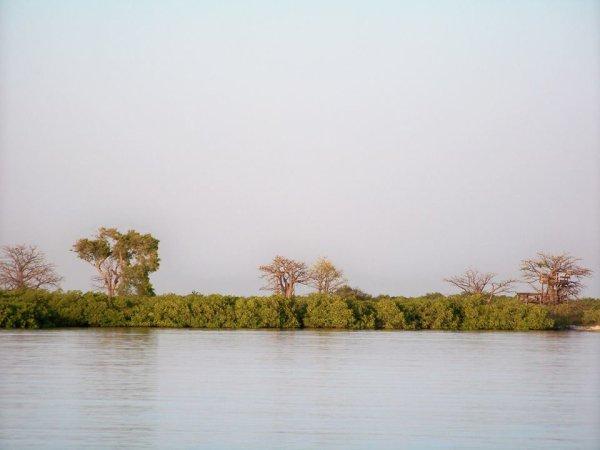 Voyage Découverte-sine saloum Sénégal