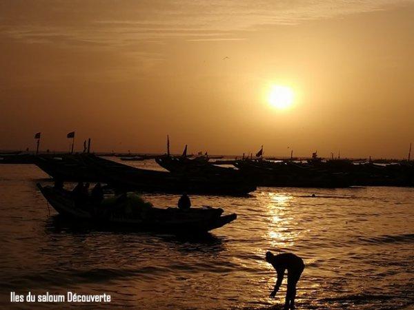 iles du Saloum Découverte-Sénégal