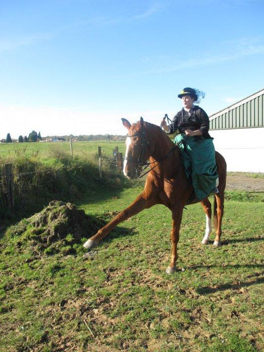 Mon cheval de dame à la St Hubert.