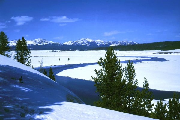 Parc de Yellowstone.