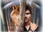 Blog de dance-with-a-werewolf