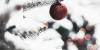Merry Christmas || OS