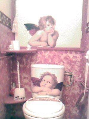 Envie de redécorer tes toilettes .