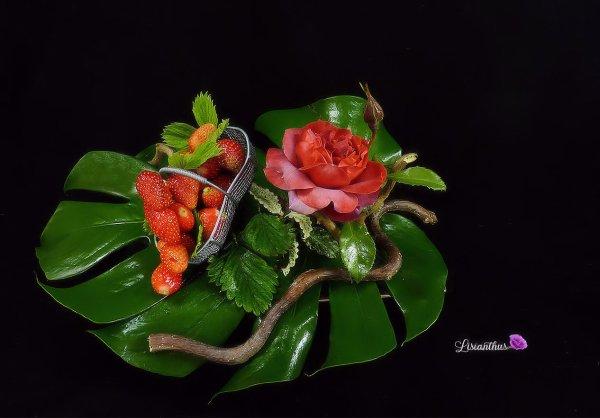 Fraises & Fleurs