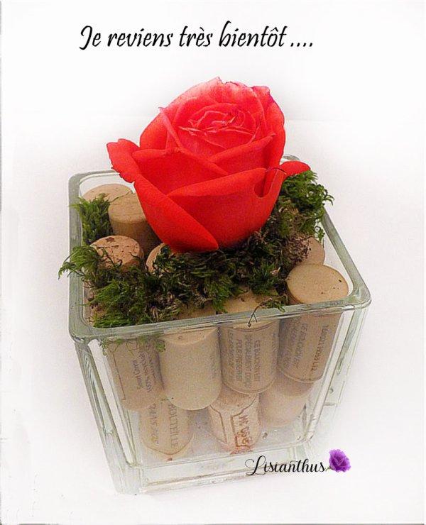 rose & bouchons