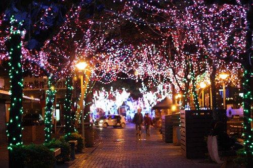 Planning de Decembre ♥