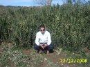 Photo de rachidos4