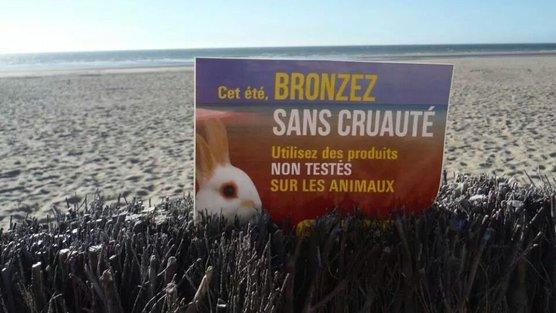 Pétition - produits non testés sur les animaux