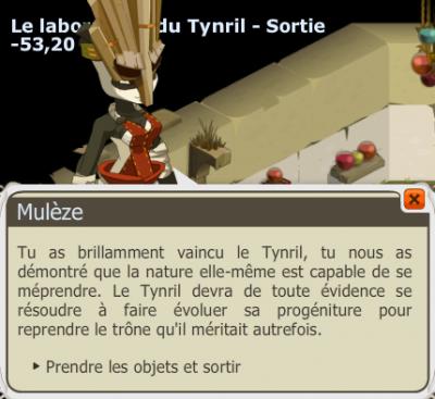 Donjon Tynril.