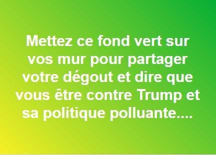 489 - Fond vert contre Trump