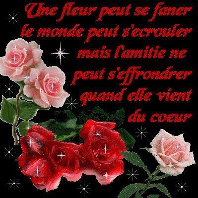 oO°°Oo♥♥♥...LE POEME DE L'AMITIE, MEME SI ON SE SENT SOLITAIRE ...♥♥♥oO°°Oo