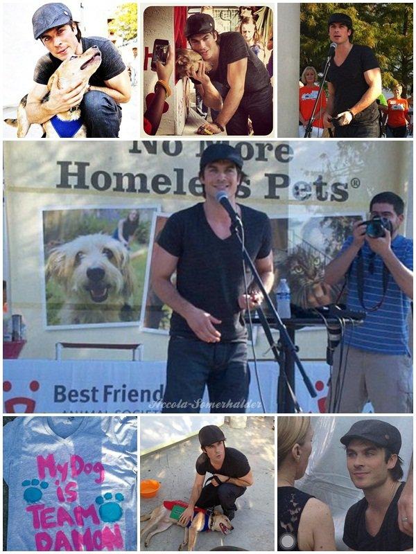 Still de l'épisode 4x02 + Photo de Ian et Gabby + 22/09/12 : Strut Your Mutt event +  Spoilers