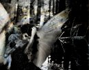 Pictures of Dark-Angel666