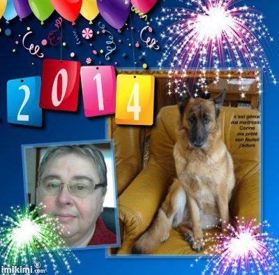 cadeau pour mon amie corine606 et mon amie just-foryou33 mes meilleurs voeux pour l'a 2014 des gros bisous de lili2248