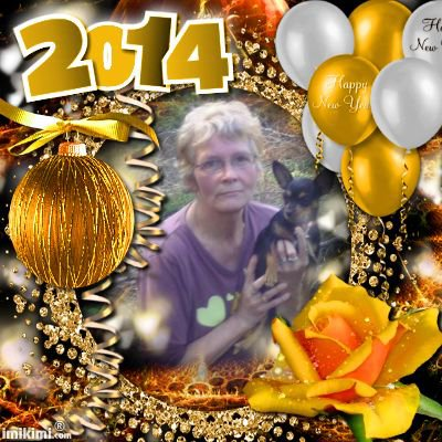 meilleurs voeux pour l'a 2014 pour mes miau88 et pilou62-68  des gros bisous de lili2248