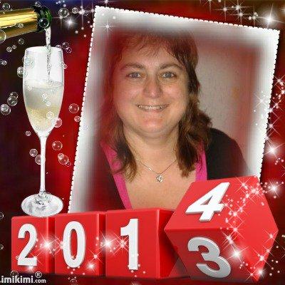 meilleurs voeux pour l'a 2014 pour mes amaie sylvie et jaccat2 des gros bisous de lili2248