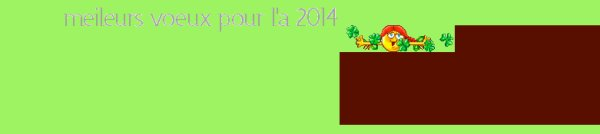 meilleurs voeux pour l'a 2014 a toute la famille cicco-bbey de la part de lili2248 gros bisous