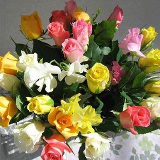 et oui mon petit coeur demain c'est ton anniversaire tu aura 4ans le 16/2/2014 des gros bisous de ta maman et princesse et romeo