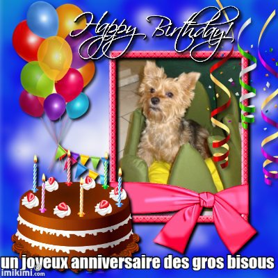 un tréx joyeux anniversaire a uline pour c'est 11ansdes gros bisous de lili2248 et prissence et lisa et gipsy