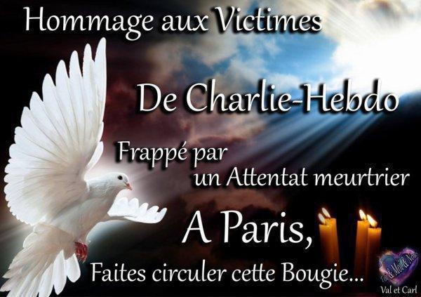 un hommage à charlie et toues c'est victimes et tout les familles