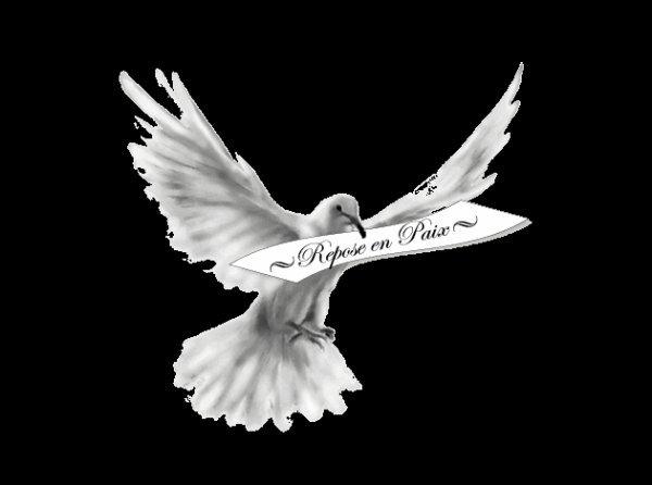 pour mon silver  qui nous quite pour le paradi repose en paix et courage a ta maman je suis de tout coeur avec toi mon amie