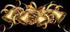 j'ai ce joli cadeau de mon amie madelo2008  un grand merci pour mon anniveraire demain et a toi aussi une joyeuses fete de noel gros bisous de moi lili2248    /j'ai encore reçu ce joli cadeau de mon amie 49cibene un trés grand merci gros bisous de moi lili2248
