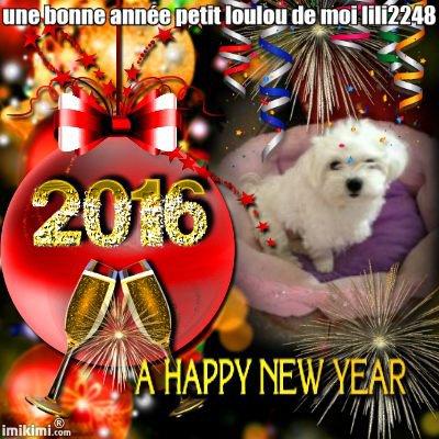 encore des cadeau pour petit loulou bonne année pour 2016 gros bisous de moi lili2248
