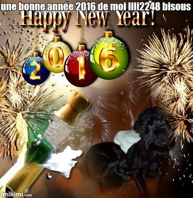 encore cadeau des loulou une bonne année 2016 bisous de moi lili2248