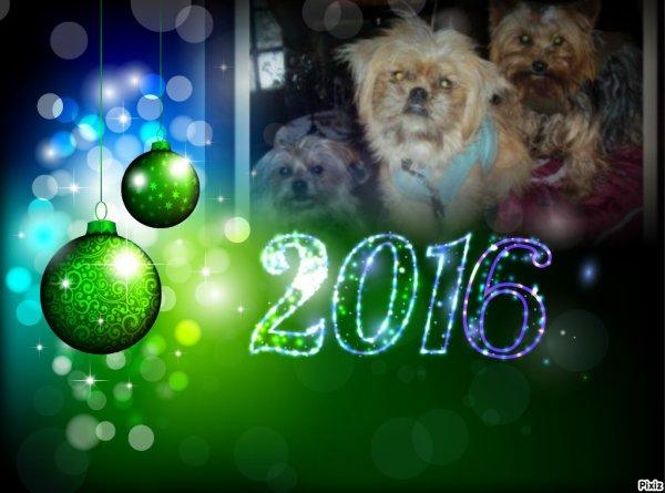cadeau pour un amie et  des loulou une trés bonne année a vous tous amie et les loulou de moi lili2248