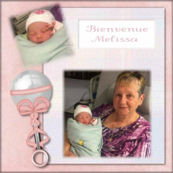bienvenue a Mlissa chez  Ghislaine (lili2248 félicitation  a la mamie çadeau  recu  de mon amie Cisso o_bbey un grand merci pour ma petite fille Melissa  des gros bisous
