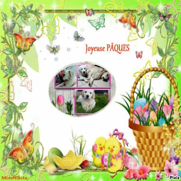 encore montage pour Pâques