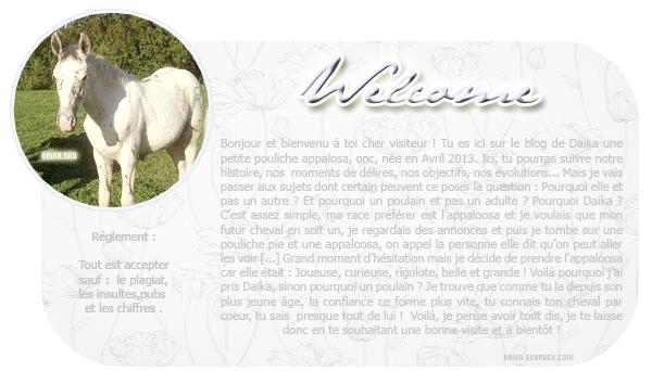 """"""" Le cheval est le symbole de la beauté et de la liberté """""""