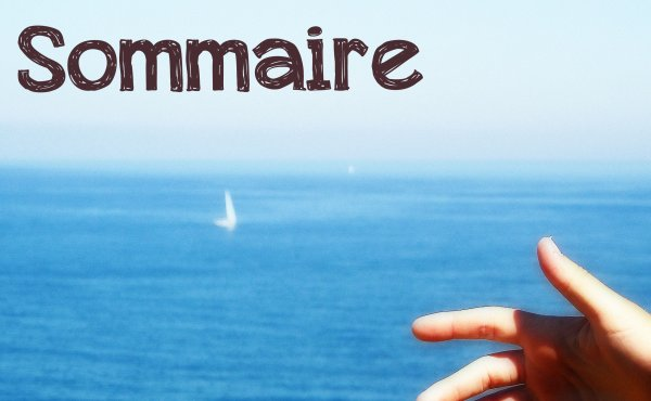 . - ~° ✿ Sommaire ✿ °~ - .