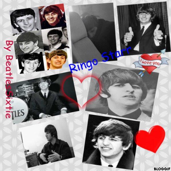 Création Ringo
