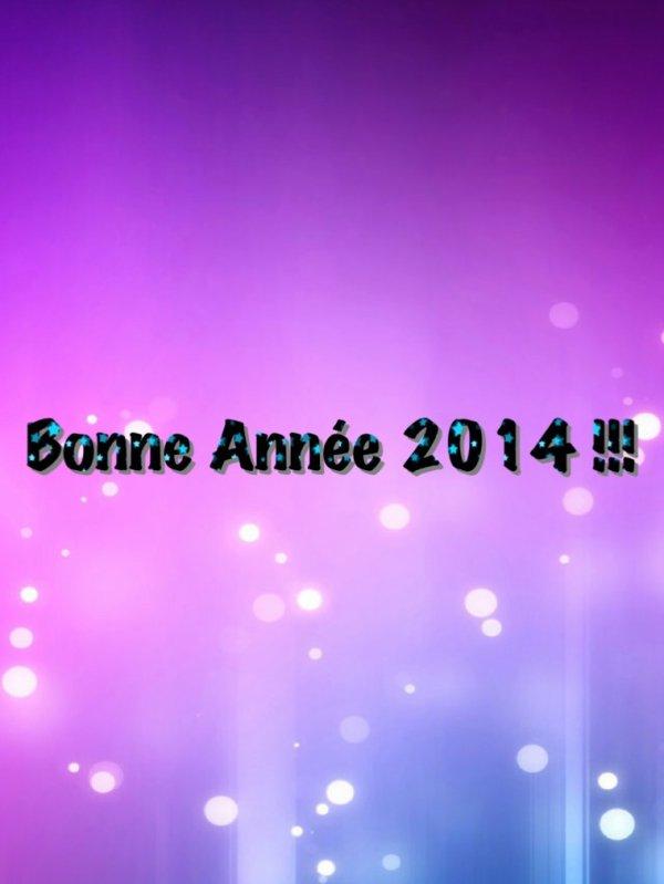 Bonne Année 2014!!