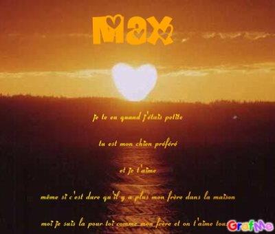 Poème Pour Max Mon Chien Adorééééééééééééééééééééééééééé