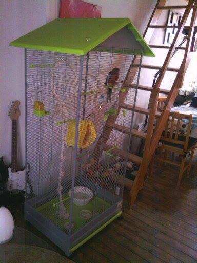 Sa nouvelle cage !