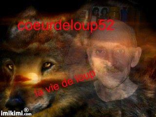 mon nouvel avatard pour blog coeurdeloup52