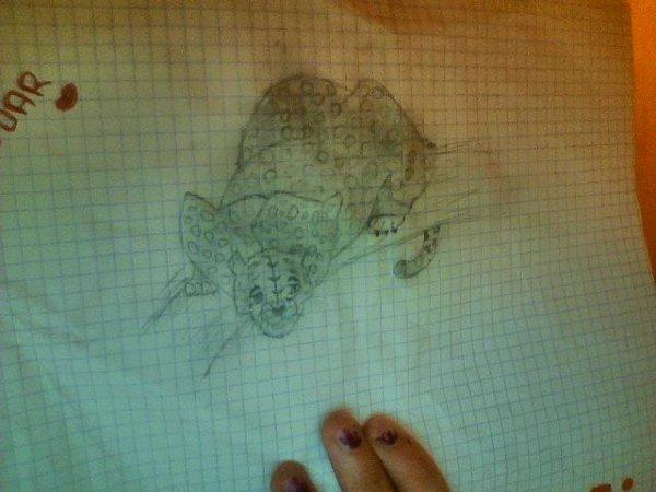Autre dessin !